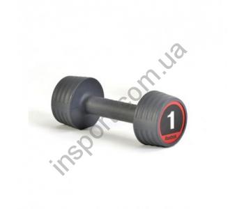 Гантели Reebok RE-21051V 2x1 кг