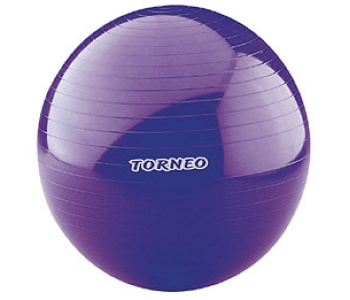 Гимнастический мяч Torneo A-209 65 см.
