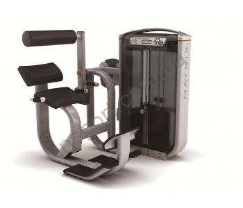 Разгибание спины Matrix Gym G7-S52