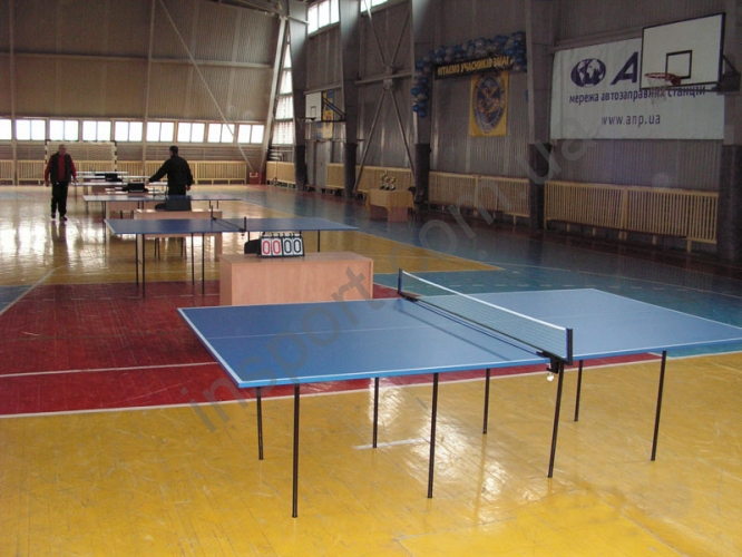 Теннисный стол синий FITNESS MASTER (украина)