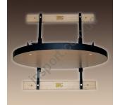 Проффесиональная платформа для пневмогруши RING