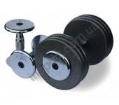 Гантельный ряд  2,5 до 25 кг Alex FDS 05 2,5/25kg